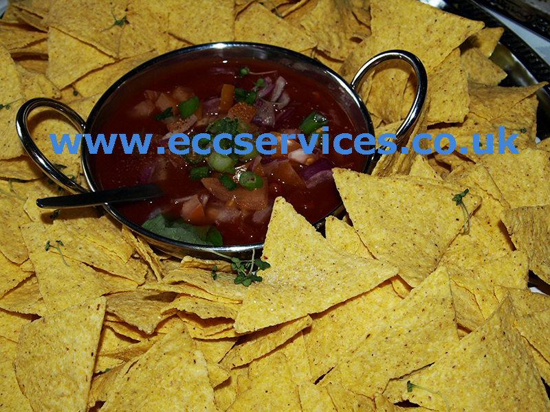 large photo of our nachos and salsa